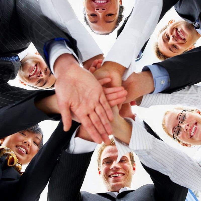 Goldfish Team member - PA Expert